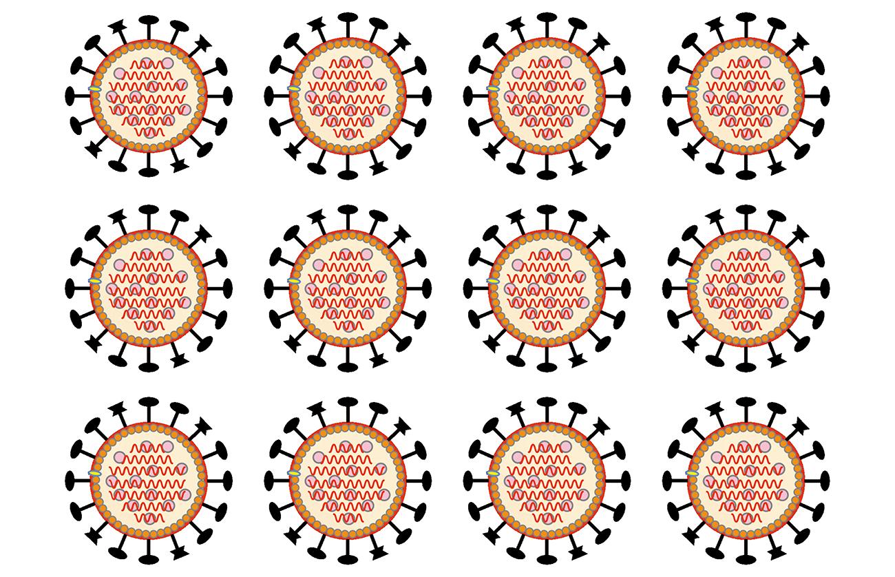 koronaviruksia