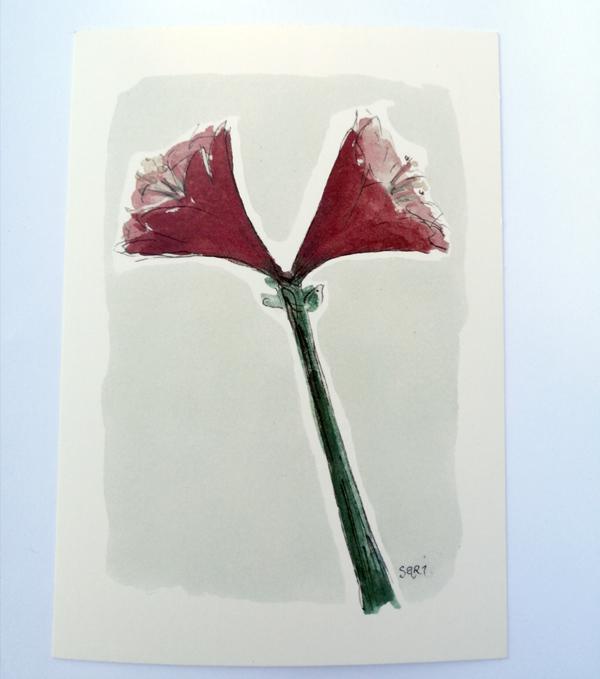 Sari´s ArtWork joulukortti, jossa punainen amaryllis