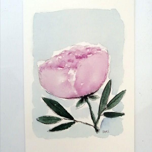 Sari´s ArtWork kortti, jossa vaaleanpunainen pioni