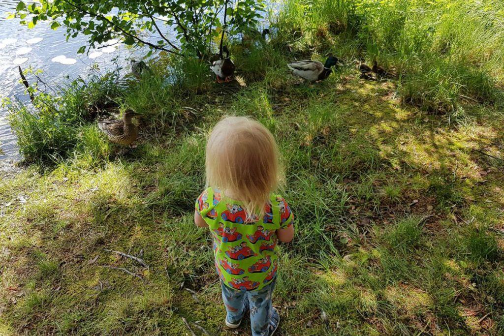 pieni poika seisoo metsässä
